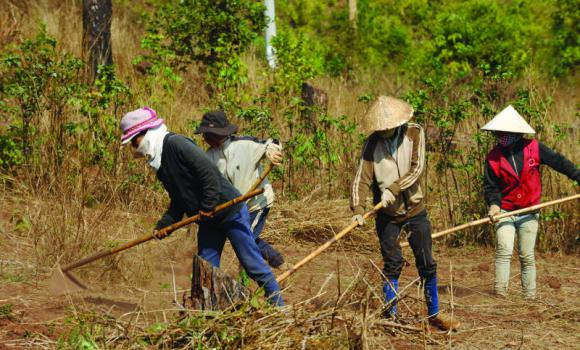 Turf battles: Vietnam's land rights crisis