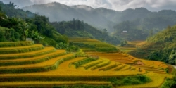 Vietnam: The beauty of Sapa