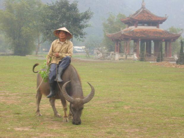 Da Nang a major port city but has a dark history