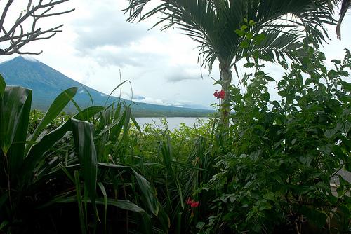 Visit Bali Bamboo Village