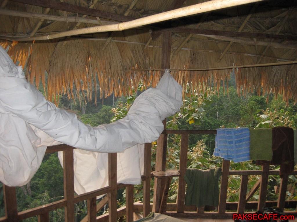Sleeping Quarters in Tree Hut