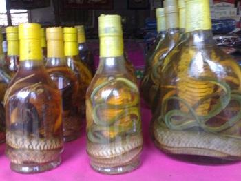 Laotian Snake Whiskey