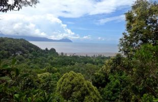 Getting to Malaysia's Bako National Park and Accommodation