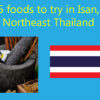 5 foods to try in Isan, Northeast Thailand